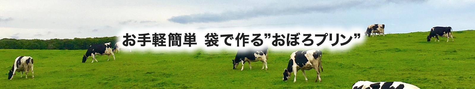 日本の酪農を守ろう!【簡単手作り】湯煎で作る袋プリン